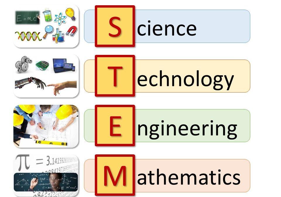 2018-19 Governor's STEM Scholars